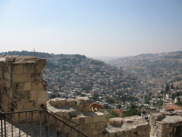 View from Wall of Jerusalem Old City.