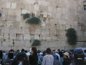 Women at the Wailing Wall, remnant of the Second Temple in Jerusalem.  These are MY People.
