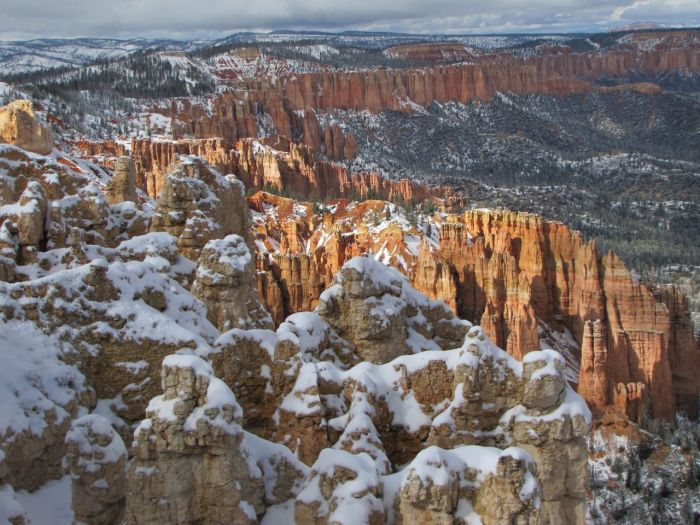 View from Rainbow Point, Bryce Canyon National Park, Utah.