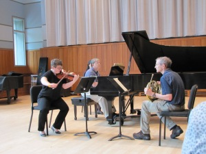 Playing Brahms Horn Trio