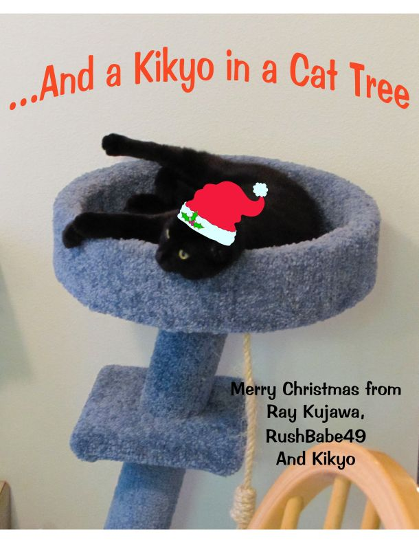 And a Kikyo in a Cat Tree-JPEG