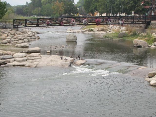 Truckee River, Reno