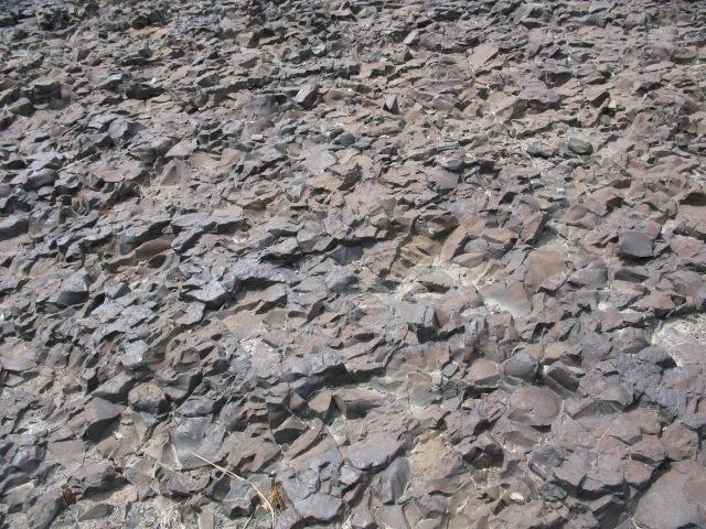 Basalt rocks along the Columbia River in Eastern Washington State