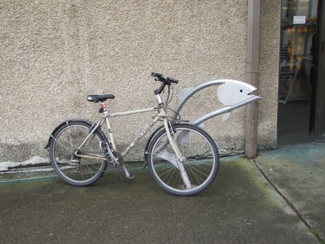 Bike-Salmon