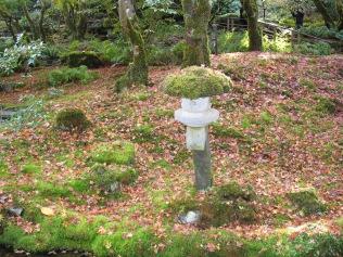 Seen in Japanese Garden