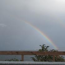 Double rainbow-Kingston