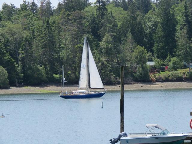 BlueBoat-Nordland