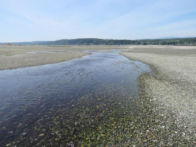 LagoonBeach-river