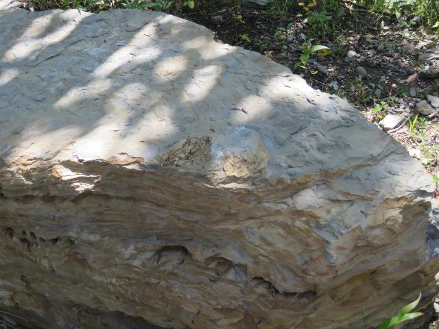 SedimentaryRock