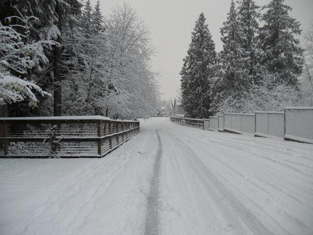 SnowyStreet2011