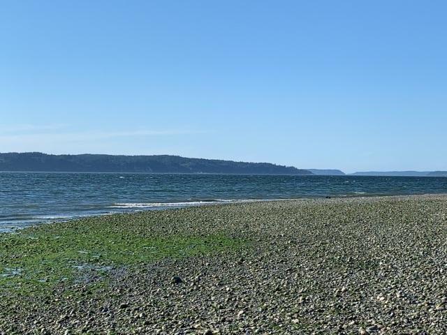 Beach-PugetSound