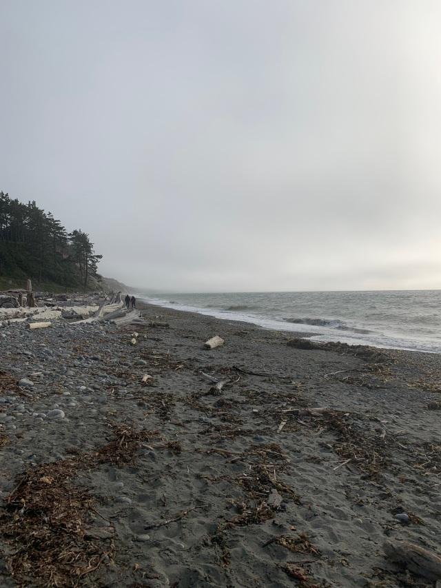 Beach-south-fog