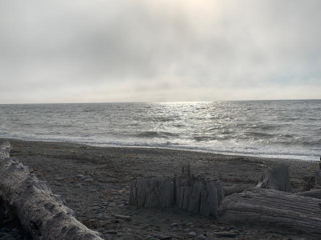 BeachInFog