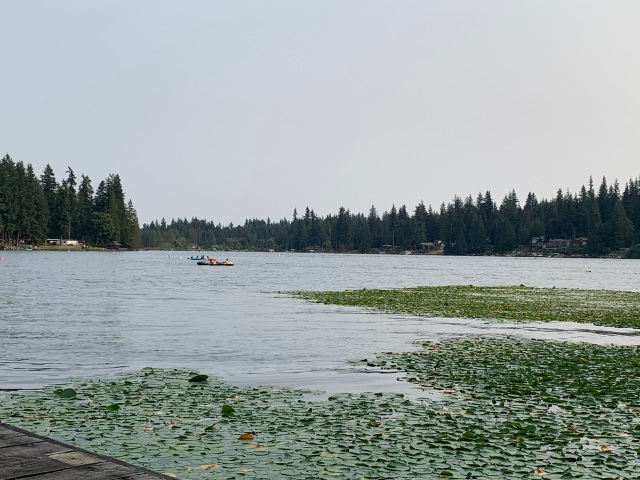Lake-paddlers